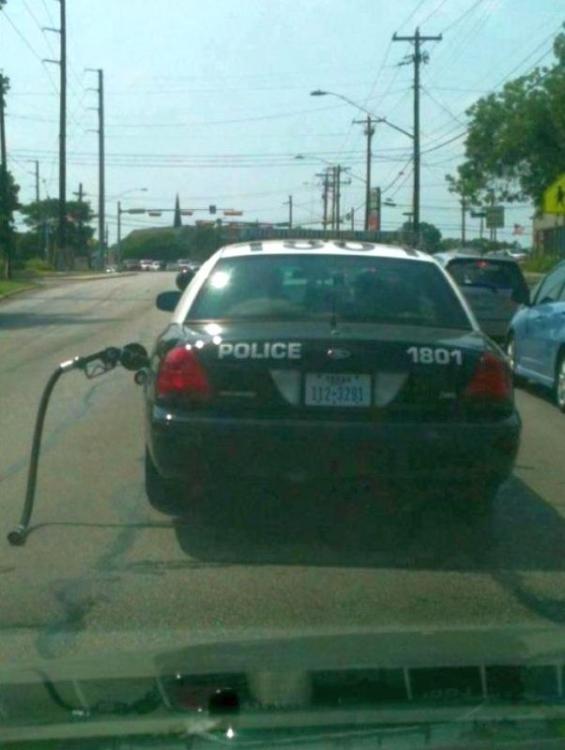 Polizei2.jpg