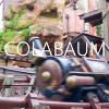 Colabaum